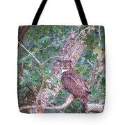 Give A Hoot Tote Bag