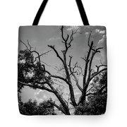 Give Me Life Tote Bag