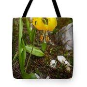 Glacier Lily 1 Tote Bag