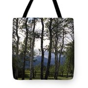 Glacier National Park Green Trees Mountains Tote Bag