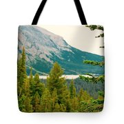 Glacier Np View Tote Bag