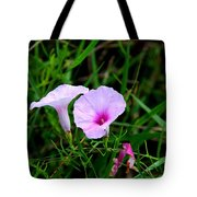 Glades Morning Glory Tote Bag