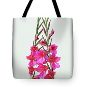 Gladioli Byzantinus In Love Tote Bag
