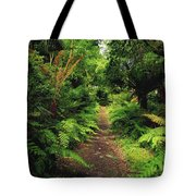 Glanleam, Co Kerry, Ireland Pathway Tote Bag