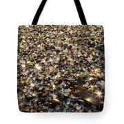 Glass Beach Tote Bag