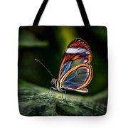 Glasswing Butterfly Iridescence  Tote Bag