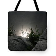 Gleam Tote Bag
