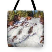 Glen Alpine Falls In Early Morning Light Tote Bag