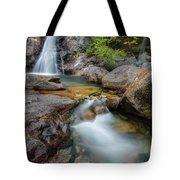 Glen Ellis Falls Autumn Tote Bag