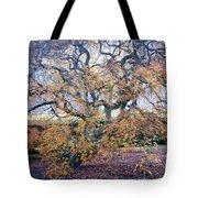 Glen Park Manor Garden Tote Bag