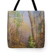 Glenmoor Woods, Sunset Tote Bag