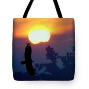 Gliding By The Sun Tote Bag