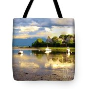 Glistening Cove At Low Tide Tote Bag