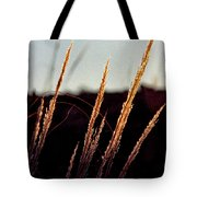 Glistening Grass Tote Bag