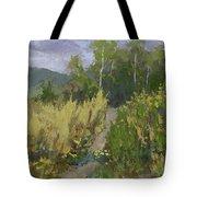 Gloomy Day Hike Tote Bag by David King