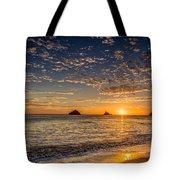 Glorious Playa Sunset Tote Bag