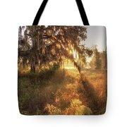 Glorious Sunrise At The Oak Tree Tote Bag