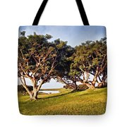 Glory In The Morning Pntb Tote Bag