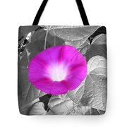 Glory Pink Tote Bag
