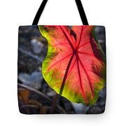 Glowing Coladium Leaf Tote Bag