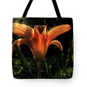 Glowing Day Lily Tote Bag
