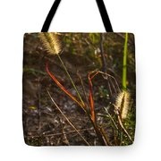 Glowing Foxtails Tote Bag