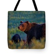 Glowing Grizzly Bear Tote Bag