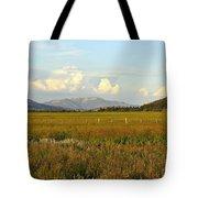 Glowing Meadow Tote Bag