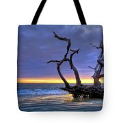 Glowing Sands At Driftwood Beach Tote Bag