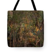 Glowing Trees Tote Bag