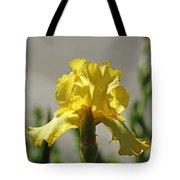 Glowing Yellow Iris Tote Bag