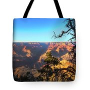 Gnarled Juniper On Canyon Rim Tote Bag