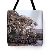 Gnarled Oak Trees Tote Bag