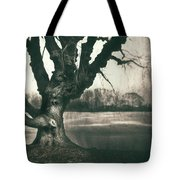 Gnarled Old Tree Tote Bag