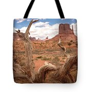Gnarled Tree At Monument Valley  Tote Bag