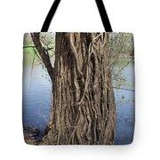 Gnarly Tree 2 Tote Bag