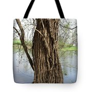 Gnarly Tree 3 Tote Bag