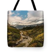 Gnp-scenic View Tote Bag