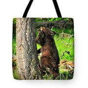 Go Climb A Tree Tote Bag