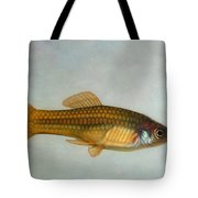 Go Fish Tote Bag