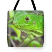 Go Iguana Green 2 Tote Bag