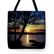 Go To Nature Tote Bag
