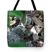 Goanna In Changing Light  Tote Bag