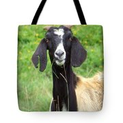 Goat Dental Floss Tote Bag