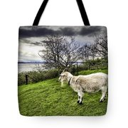 Goat Enjoying The View Tote Bag
