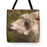 Goat Looking Up. Tote Bag
