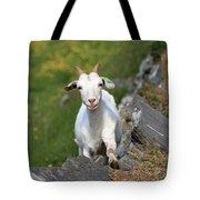 Goat Posing Tote Bag