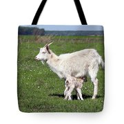 Goat With Just Born Little Goat Spring Scene Tote Bag
