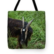 Goat With Long Horns In A Grass Field Tote Bag