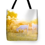 Goats Grazing In Field Tote Bag